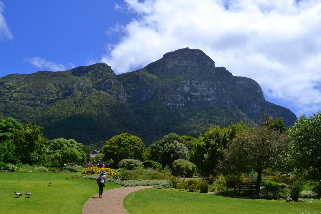 Botanical Gardens, Cape Town