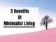 Minimalism Benefits