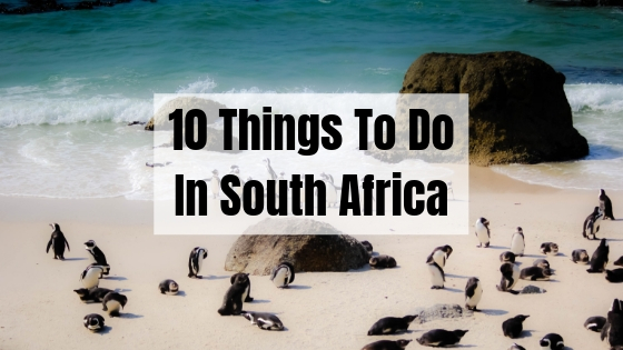10 Life Changing Things To Do In South Africa