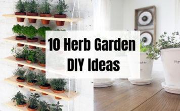 10 Amazing Herb Garden DIY Ideas