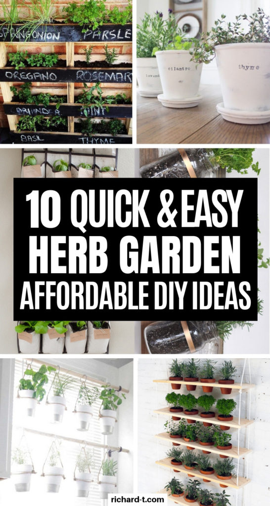 10 Herb Garden DIY Ideas