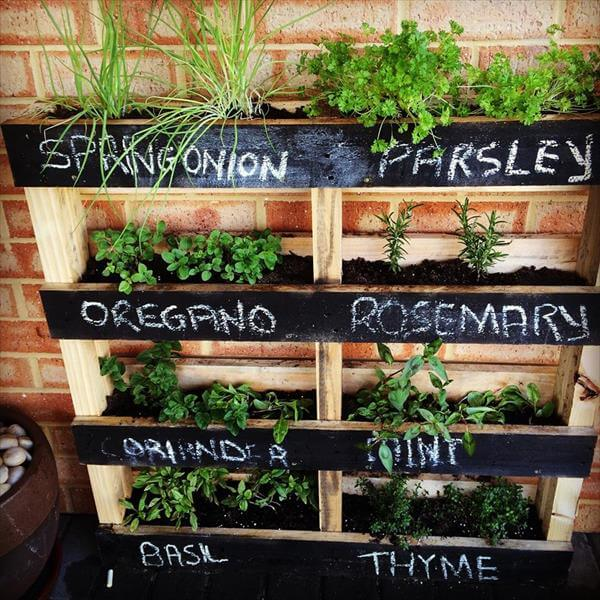Amazing Herb Gardens DIY