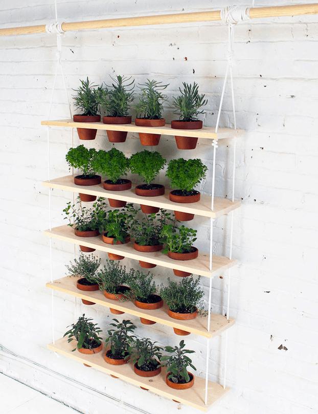 Hanging board herb garden