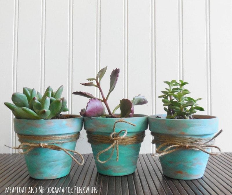 Succulent Pots DIY Dollar Store