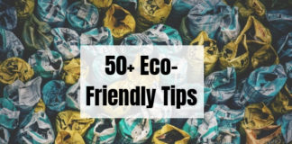 50+ Eco-Friendly Tips