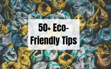50+ Eco-Friendly Tips