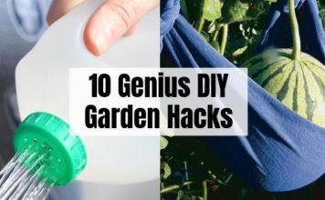 10 Garden Hacks