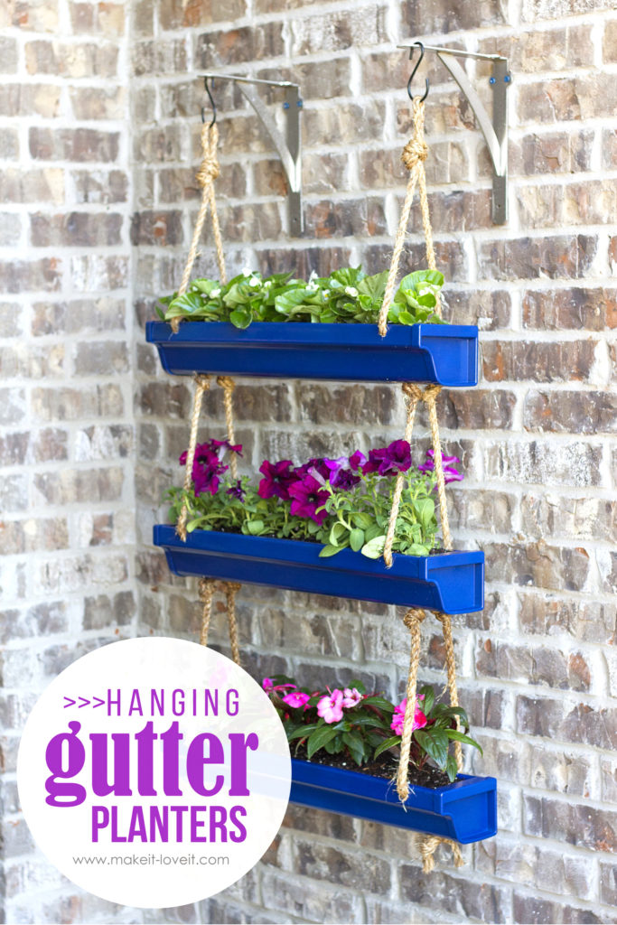 DIY Hanging Rain Gutter Plants