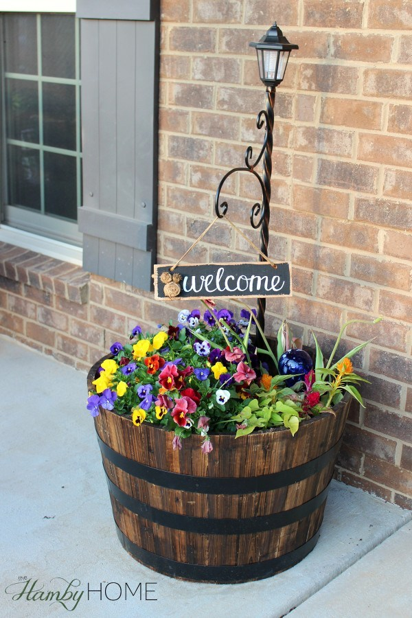 Front Porch Welcome Plant