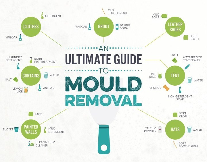 Mould Removal cleaning hacks