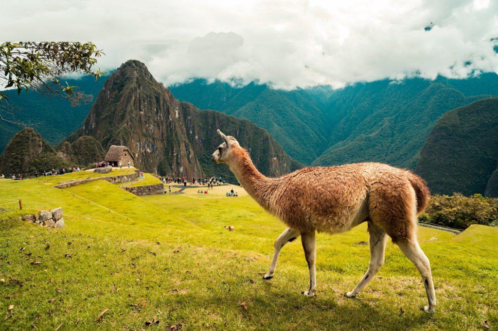 Peru South America Travel