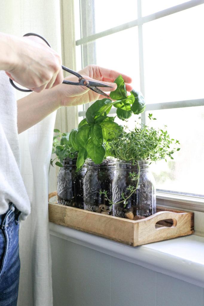 Mason Jar Crafts Herb Garden