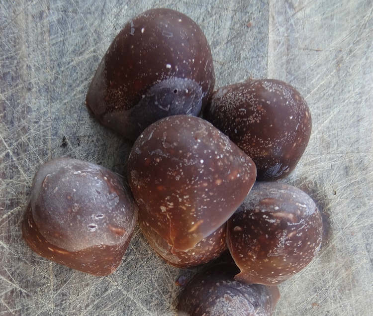 3 Ingredient Keto Chocolate Peanut Butter Fat Bomb